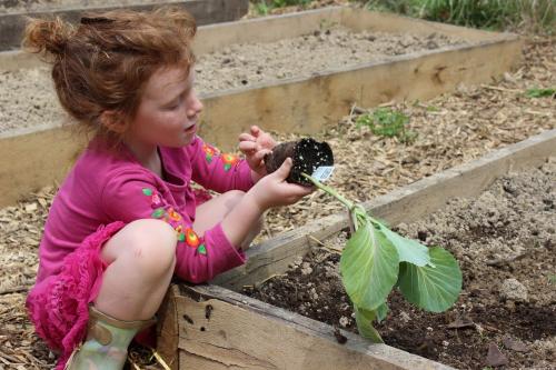 Child in Garden at Divinum Auxilium Academy