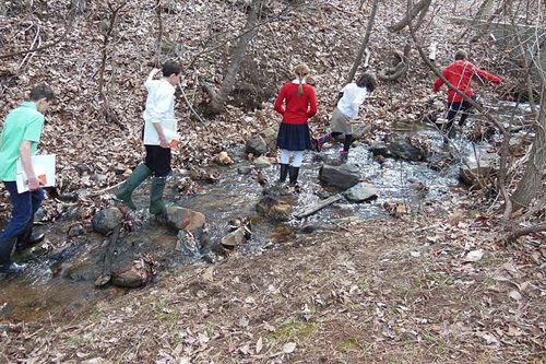 Students Experience Nature at Divinum Auxilium Academy